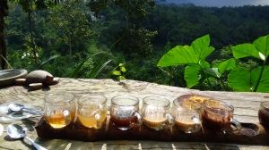 Taster tray of various coffees and teas.